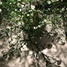 Des tables fleuries, un accueil sans pareil