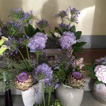 Hortensia bleu et agapanthe