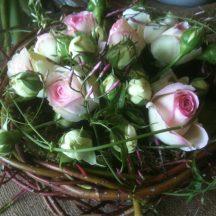 rose jasmin