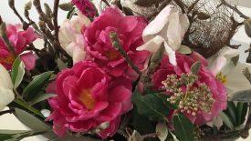 magnolia bis